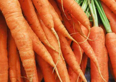 FS carrot 1500 q35